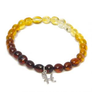 Custom Design Rainbow Color Amber Bracelet with Drop Silver Letter